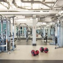 gal-gym1.jpg